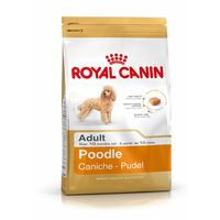 Изберете Royal Canin 39